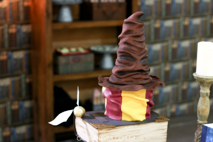 festa infantil harry potter