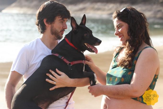gravida cachorro