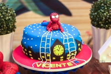 Vicente 4 anos web-33